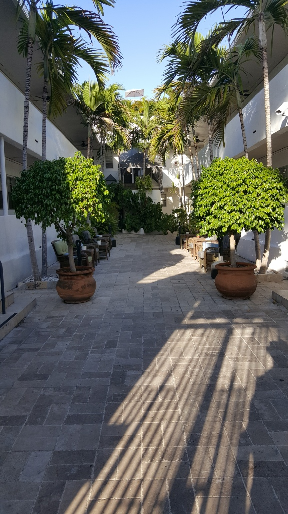This is the courtyard. I read in this courtyard, and it was amazing.